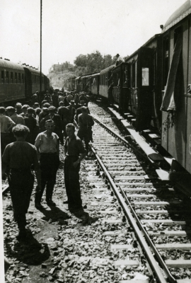 Transport z repatriantami przybyłymi do Szczecina. Muzeum Narodowe w Szczecinie