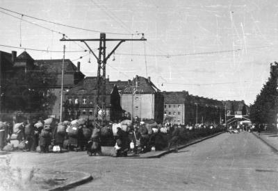 Transport Niemców z Pomorza w oczekiwaniu na rejestrację w Punkcie Zborczym Nr 3 przy ul. Mickiewicza 1 maja 1946 roku. Fot. K. Haska, Muzeum Narodowe w Szczecinie